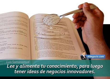 ideas de negocios espíritu emprendedor