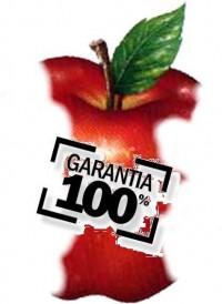 garantia_de_curso1